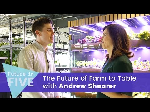 wine article The Future of Farm to Table with Andrew Shearer  Future in Five