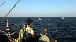 Wisata Pulau Kangean