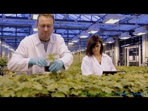 R&D IT @ Bayer -  IT für weltklasse Forschung und Entwicklung