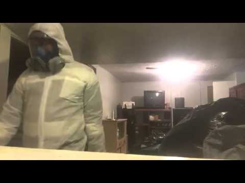 Flea Removal Techniques From City Pest Control Inc In Brampton