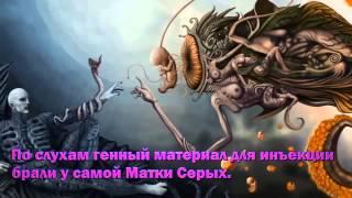 Пятибрат  Проект Прометей  Project Prometheus