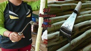 Forging A $2.5-Sugarcane Skin Peeler | Forging A Scraper Knife