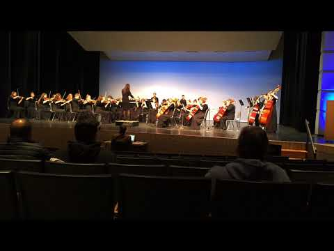 Grand Haven High School Chamber Orchestra 2019