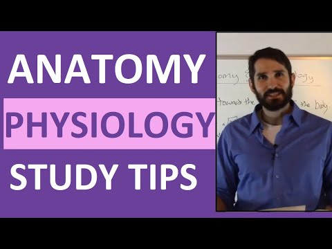 Anatomy and Physiology Study Tips | How to ACE Anatomy & Physiology ...