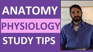 Anatomy and Physiology Study Tips | How to ACE Anatomy & Physiology