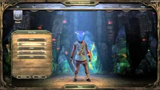 Pillars of Eternity Backer Beta: Character Creation