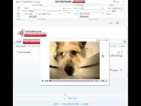 Live Content - eVideo Element | DotNetNuke Module | Mandeeps.com