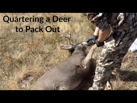 How to Clean, Quarter & Field Dress Deer for Backpacking Out