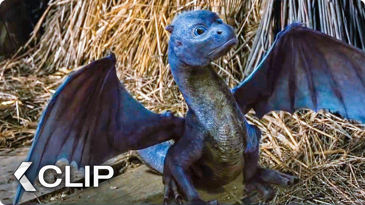 Download Feeding A Dragon Movie Clip - Eragon (2006)