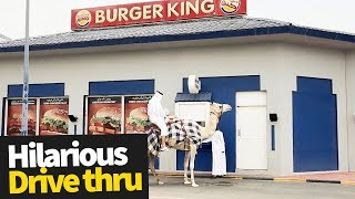 Hilarious Drive Thru Moments Caught on Camera