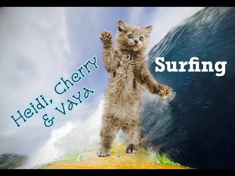 Heidi, Cherry & Vaya Go Surfing - Children's Bedtime Story/Meditation
