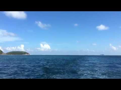 香港船釣魚之大沙梭/沙鑚 - YouTube