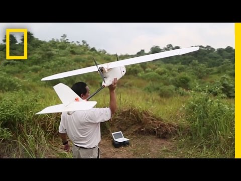 Onward: Drones Overhead — Protecting Orangutans from Above | National Geographic