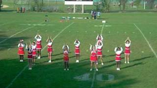 Dewitt clinton High School Cheerleaders