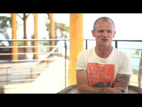 INTERVIEW: Flea of Red Hot Chilli Peppers 2016