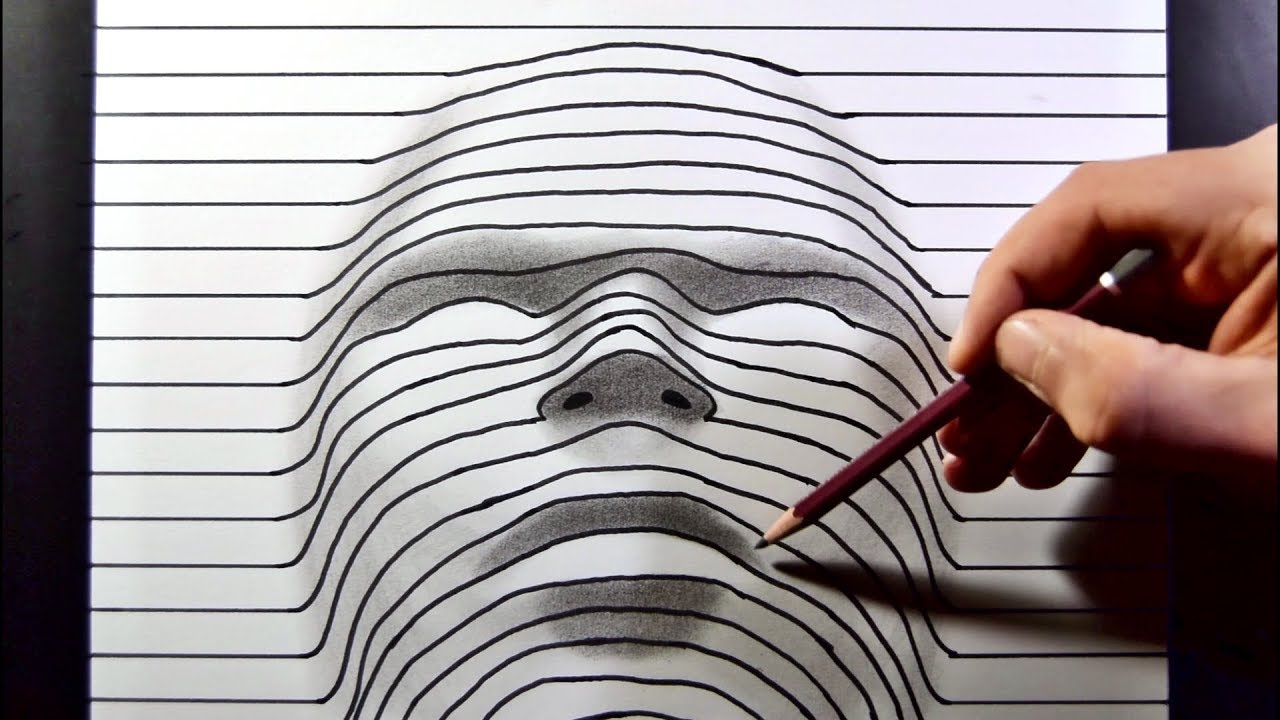 illusion line drawing face paper trick
