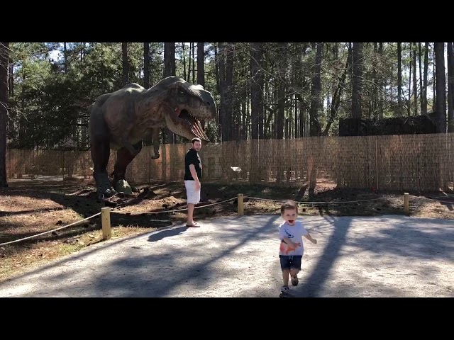 Toddler Meets Life-Size Tyrannosaurus Rex. Priceless Reaction!