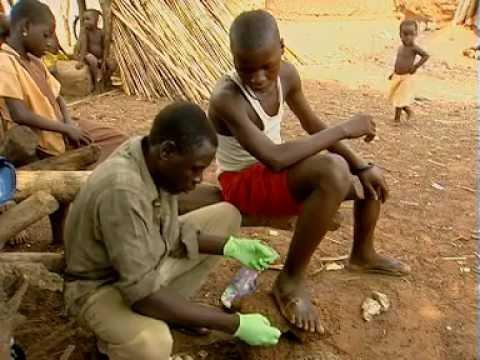 Dracunculiasis (guinea-worm disease). Heightened surveillance: the ...