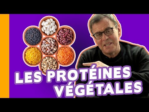 Spiruline, Graines de Soja, Germes de Blé : les Meilleures Protéines Végétales - Le Grain de Sel 🍀
