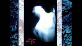 Skinny Puppy - Gods Gift (Maggot)