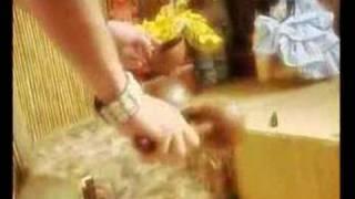 santeria ritual (vodou)