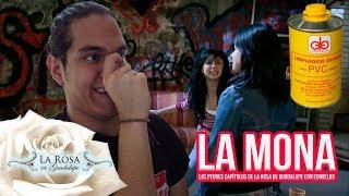 Baixar La Mona | Los Peores Capítulos De La Rosa De Guadalupe Con Edwields