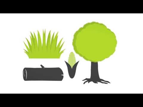 Biom Biomass Energy How Does It Work