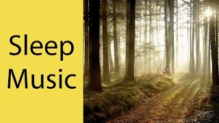 Sleep Music, Calm Music for Sleeping, Delta Waves, Insomnia, Relaxing Music, 8 Hour Sleep, ☯077A
