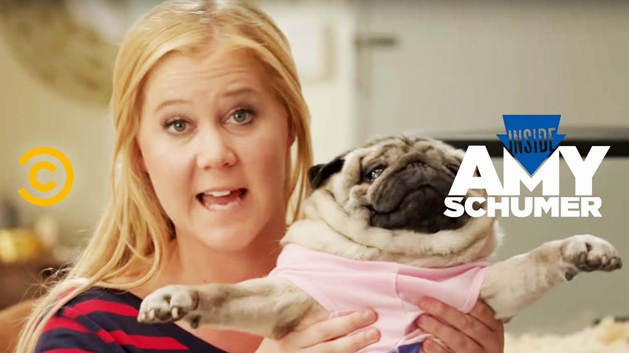 Download Inside Amy Schumer - Animal Rescue Hotline