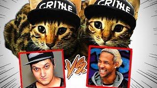 Unsere Katzen bewerten Youtuber