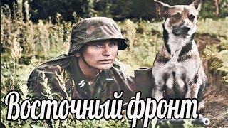 Вы можете отправить батальон в русский лес и забыть о батальоне навсегда.Почему немцы так боялись
