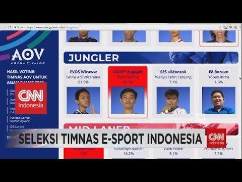 Seleksi Timnas Esports Indonesia Di Asian Games 2018
