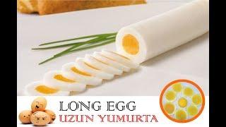 uzun yumurta orjinal ev yapımı Long Egg Production 2 speriment  إنتاج البيض طويل