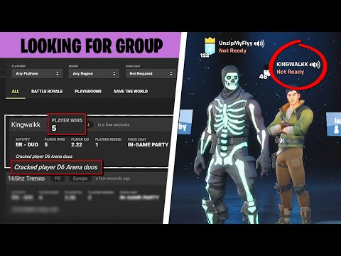 I Used Fortnite Tracker To Find A Teammate And It Was HILARIOUS