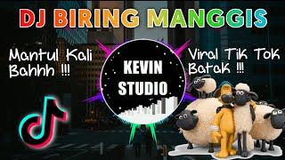 VIRAL TIK TOK !!! DJ Biring Manggis X Shaun The Sheap ♫ Terbaru 2020 by Kevin Studio