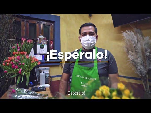Comprar y vender en línea nunca fue tan fácil - Gobierno de Michoacán