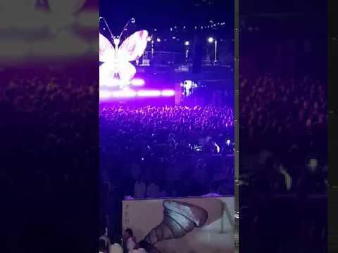 Minori in White 2017 - Butterfly Effect