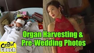 Organ Harvesting, Pre-Wedding Photos & Chinese Campgrounds [OTGC]