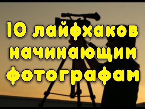 Кактусы фото и названия смотреть онлайн Виды какрусов
