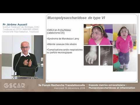 Mucopolysaccharidoses Et Inflammation