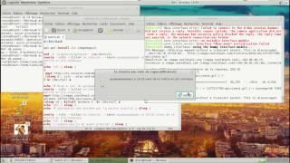 script qui détruit un linux