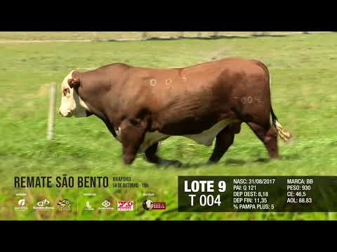 LOTE 09 T 004