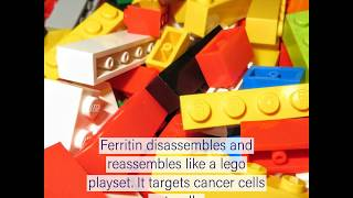 Scientists study a lego-like protein for drug delivery #weekendusers thumbnail