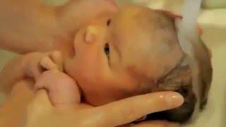 Купание новорожденных. Очень трогательное видео
