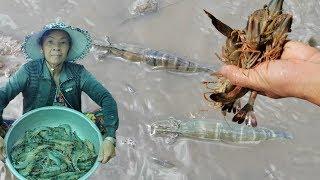 Sổ cạn bắt tôm bắt cá thấy mà ham | PLDB