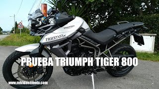PRUEBA TRIUMPH TIGER 800