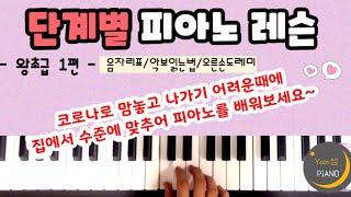 단계별 피아노 레슨 왕초급1ㅣ피아노 레슨ㅣ피아노 독학ㅣ…