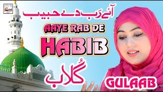 aaye-rab-de-habib---gulaab
