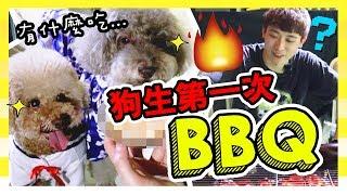 【🐶狗狗們的第一次BBQ大餐】🤤現場火燒的美食!MUFFIN & BROWNIE會喜歡嗎?(中字)