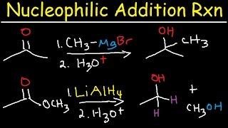Nucleophilic Addition Reaction Mechanism, Grignard Reagent, NaBH4, LiAlH4, Imine, Enamine, Reduction